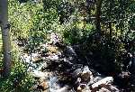 Soldier Creek