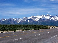 Ruby Mountains from Spring Creek Area